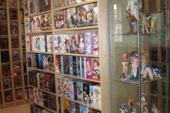ANN Shelf Life 2010