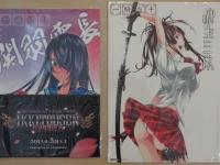 ikkitousen-kyouki-ranbu-limited-box-003