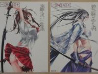 ikkitousen-kyouki-ranbu-limited-box-010